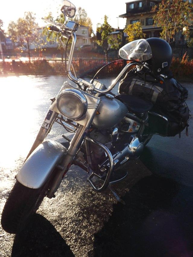 The bike - 1990 Fat Boy