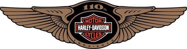 110th Logo
